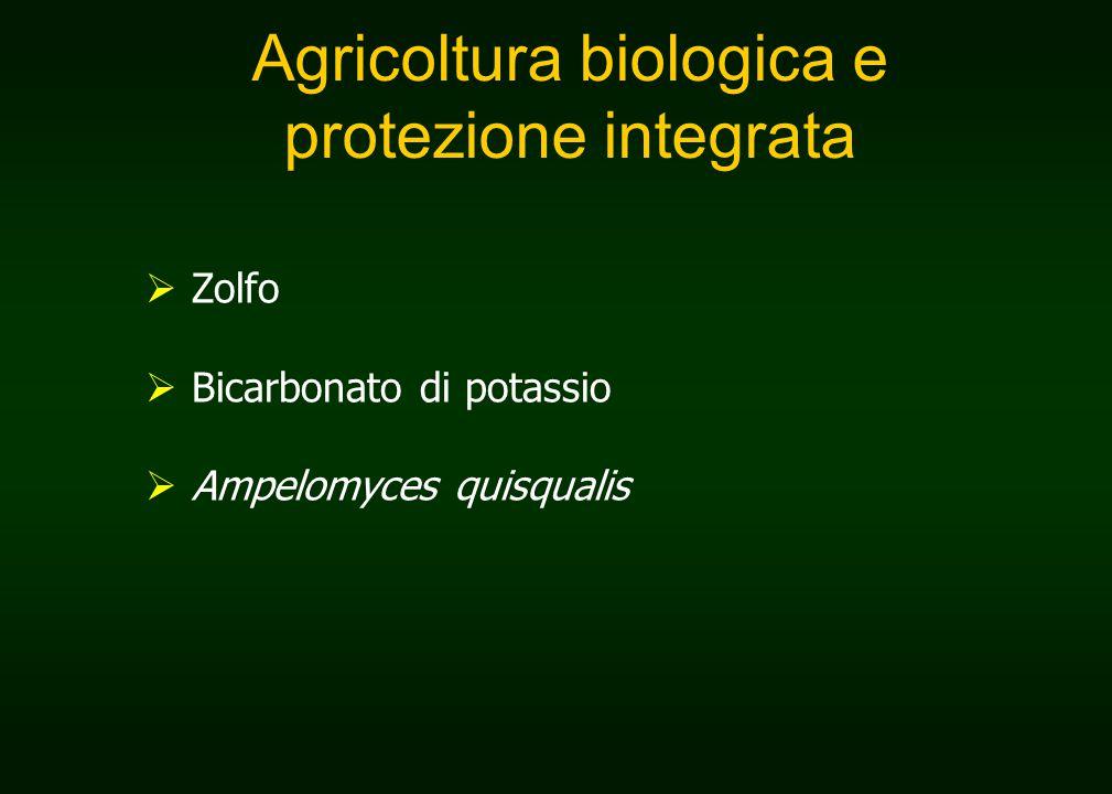 Agricoltura biologica e protezione integrata  Zolfo  Bicarbonato di potassio  Ampelomyces quisqualis