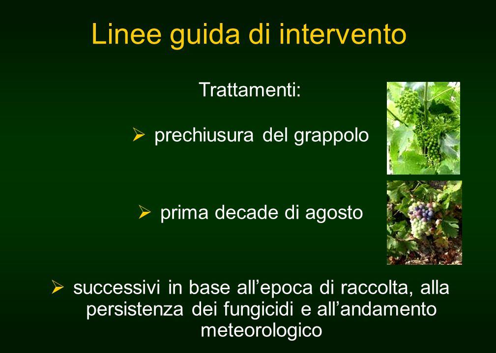Trattamenti:  prechiusura del grappolo  prima decade di agosto  successivi in base all'epoca di raccolta, alla persistenza dei fungicidi e all'andamento meteorologico Linee guida di intervento