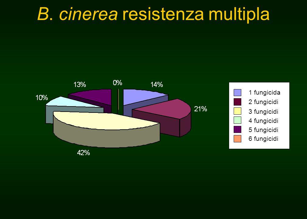 1 fungicida 2 fungicidi 3 fungicidi 4 fungicidi 5 fungicidi 6 fungicidi B.