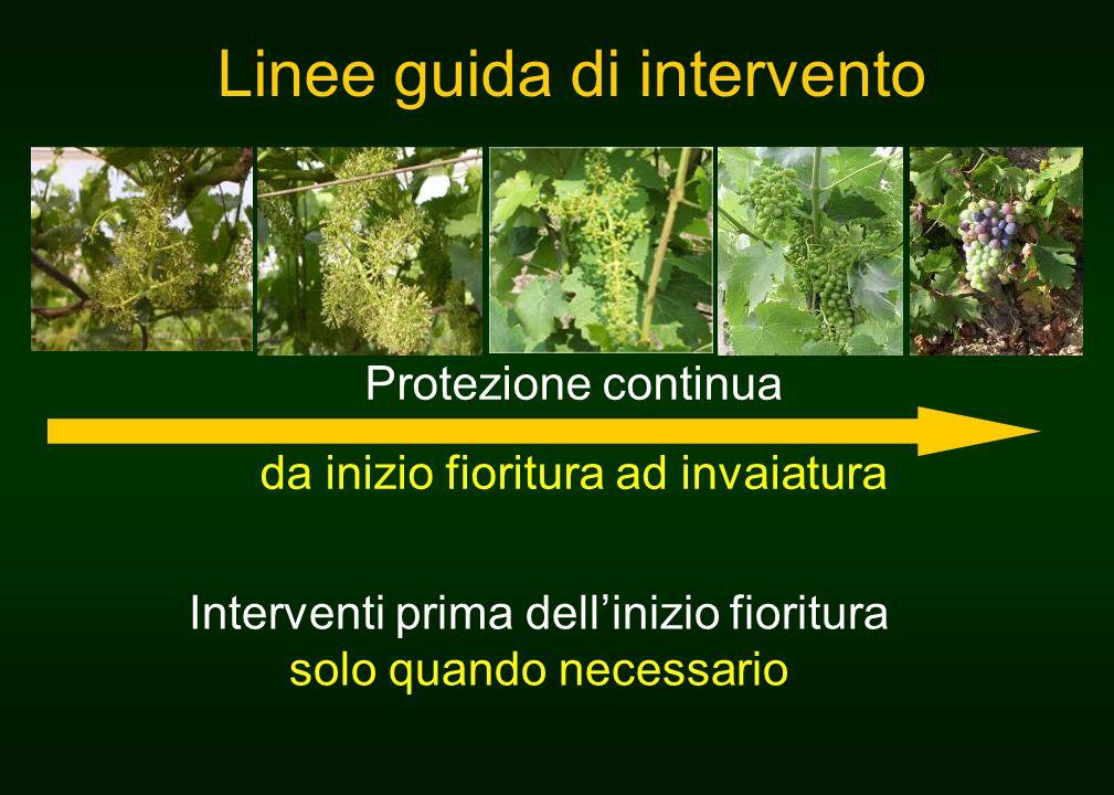 Linee guida di intervento Protezione continua da inizio fioritura ad invaiatura Interventi prima dell'inizio fioritura solo quando necessario