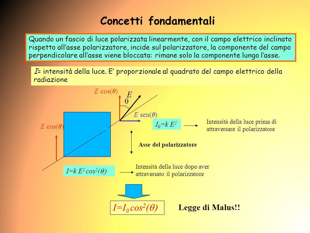 Quando un fascio di luce polarizzata linearmente, con il campo elettrico inclinato rispetto all'asse polarizzatore, incide sul polarizzatore, la componente del campo perpendicolare all'asse viene bloccata: rimane solo la componente lungo l'asse.