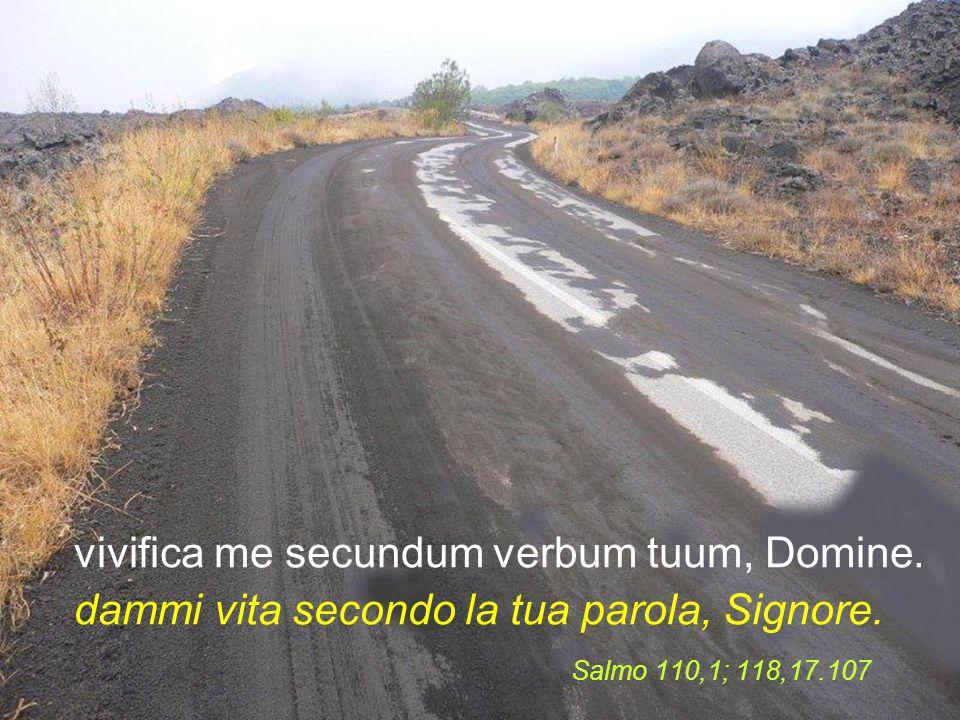 et custodiam sermones tuos: osserverò la tua parola,