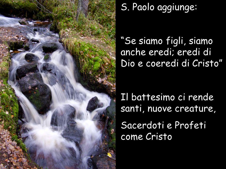 """S. Paolo aggiunge: """"Se siamo figli, siamo anche eredi; eredi di Dio e coeredi di Cristo"""" Il battesimo ci rende santi, nuove creature, Sacerdoti e Prof"""