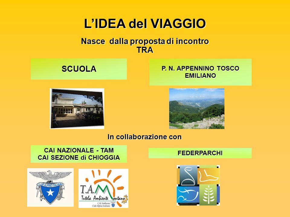 L'IDEA del VIAGGIO Nasce dalla proposta di incontro TRA SCUOLA In collaborazione con FEDERPARCHI CAI NAZIONALE - TAM CAI SEZIONE di CHIOGGIA P.