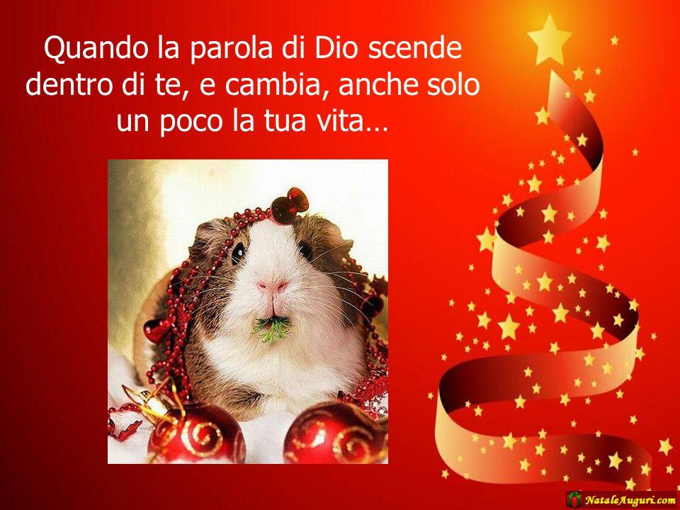 …allora è entrato nel tuo cuore Natale!