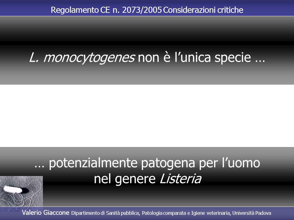 Regolamento CE n. 2073/2005 Considerazioni critiche … potenzialmente patogena per l'uomo nel genere Listeria L. monocytogenes non è l'unica specie … V