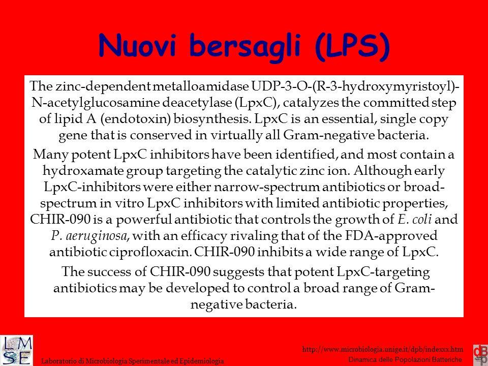 http://www.microbiologia.unige.it/dpb/indexxx.htm Dinamica delle Popolazioni Batteriche Laboratorio di Microbiologia Sperimentale ed Epidemiologia Nuo