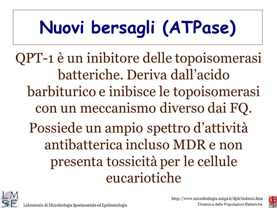 http://www.microbiologia.unige.it/dpb/indexxx.htm Dinamica delle Popolazioni Batteriche Laboratorio di Microbiologia Sperimentale ed Epidemiologia Nuovi bersagli (ATPase) QPT-1 è un inibitore delle topoisomerasi batteriche.