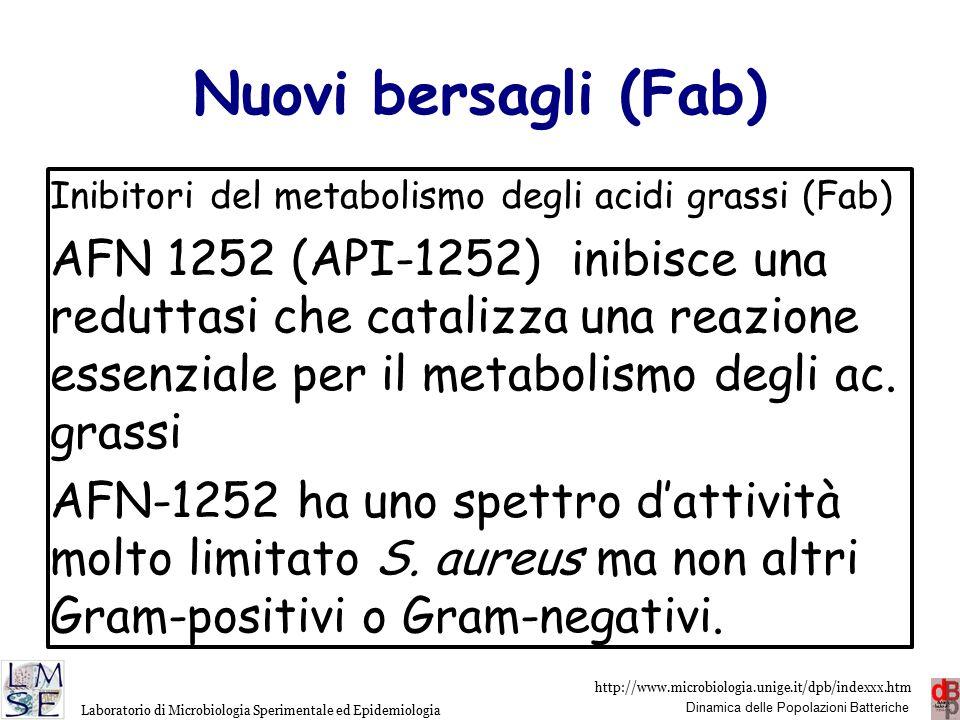 http://www.microbiologia.unige.it/dpb/indexxx.htm Dinamica delle Popolazioni Batteriche Laboratorio di Microbiologia Sperimentale ed Epidemiologia Nuovi bersagli (riboswitch) BRX-1555 inibisce riboswitches.