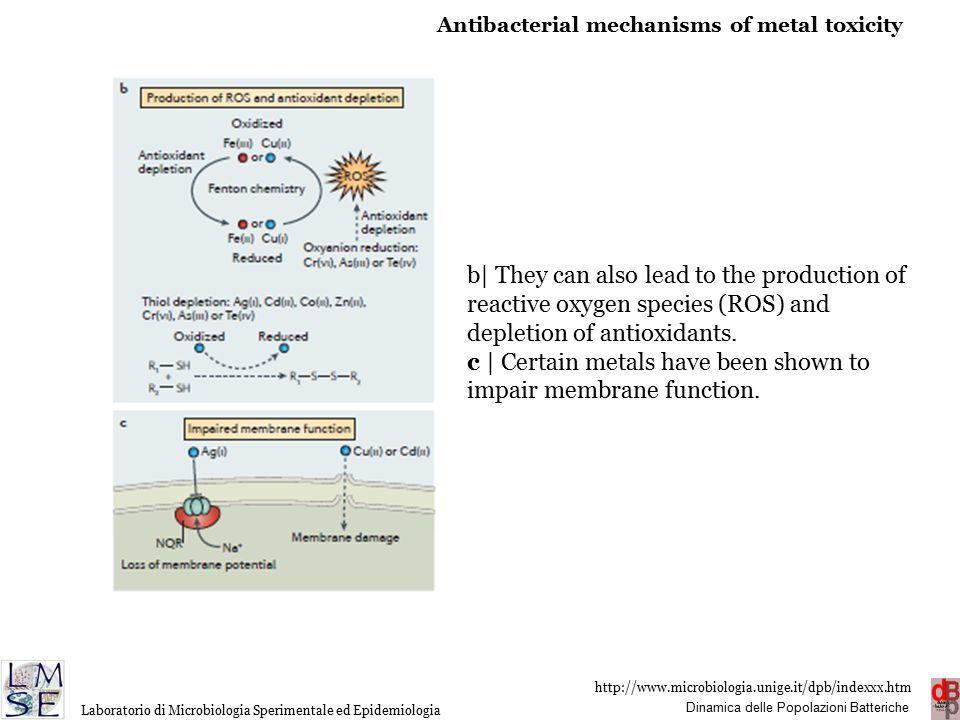 http://www.microbiologia.unige.it/dpb/indexxx.htm Dinamica delle Popolazioni Batteriche Laboratorio di Microbiologia Sperimentale ed Epidemiologia b|