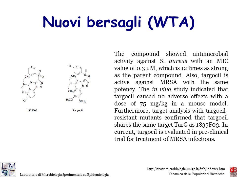 http://www.microbiologia.unige.it/dpb/indexxx.htm Dinamica delle Popolazioni Batteriche Laboratorio di Microbiologia Sperimentale ed Epidemiologia Nuovi bersagli (LPS)