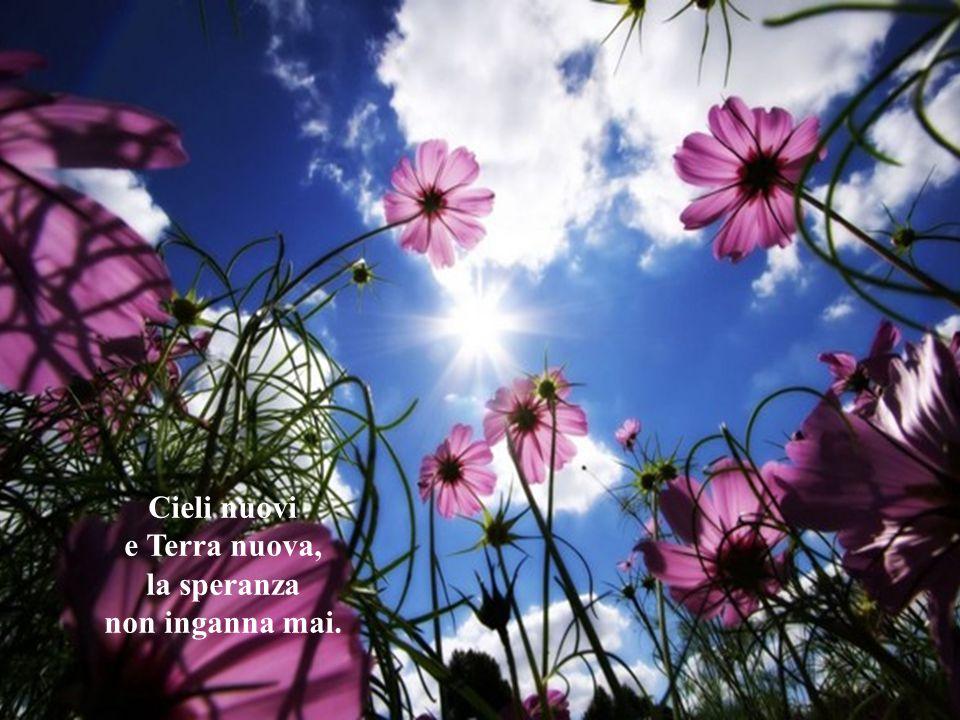 È il Pane del Cielo che ci fa vivere, che chiama a vivere e andare a portare il tuo dono.