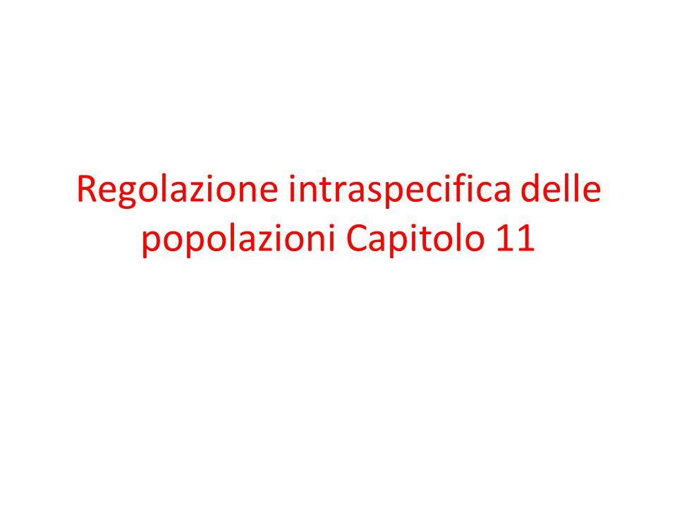Regolazione intraspecifica delle popolazioni Capitolo 11