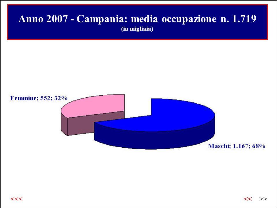 Anno 2007 - Campania: media occupazione n. 1.719 (in migliaia) >><<<<<