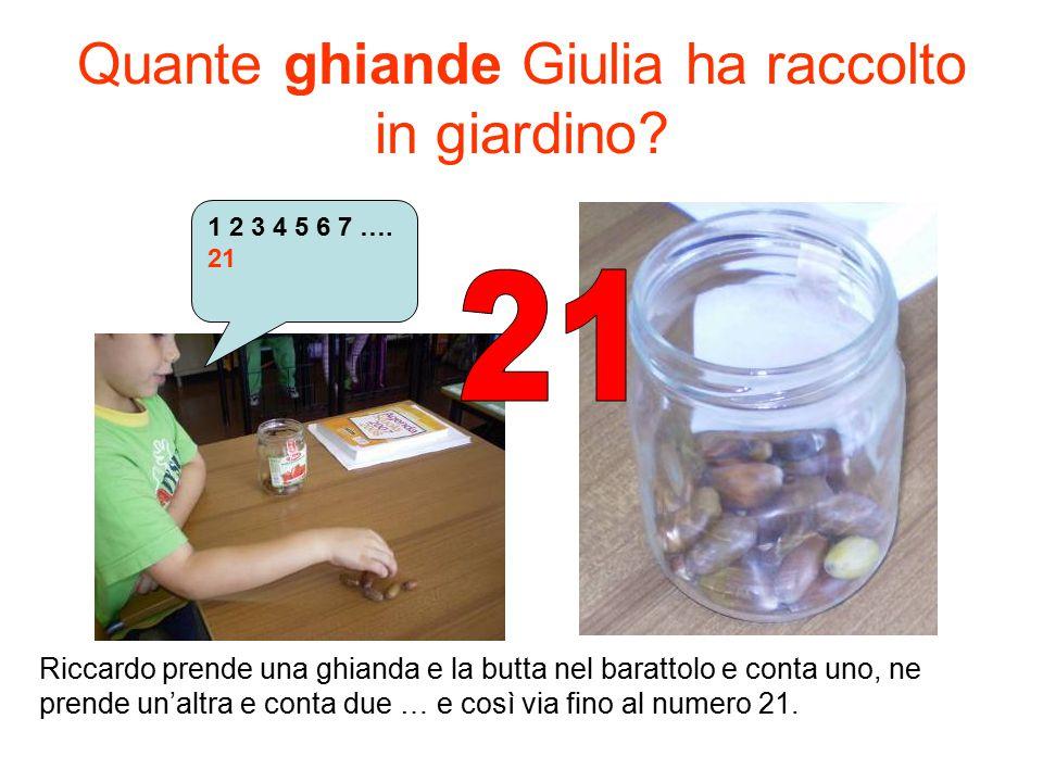 Quante ghiande Giulia ha raccolto in giardino? 1 2 3 4 5 6 7 …. 21 Riccardo prende una ghianda e la butta nel barattolo e conta uno, ne prende un'altr