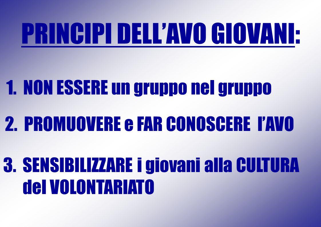 1. NON ESSERE un gruppo nel gruppo PRINCIPI DELL'AVO GIOVANI: 2.