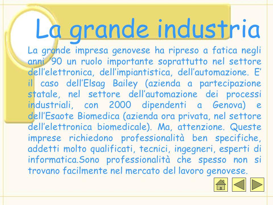 La grande industria La grande impresa genovese ha ripreso a fatica negli anni '90 un ruolo importante soprattutto nel settore dell'elettronica, dell'impiantistica, dell'automazione.