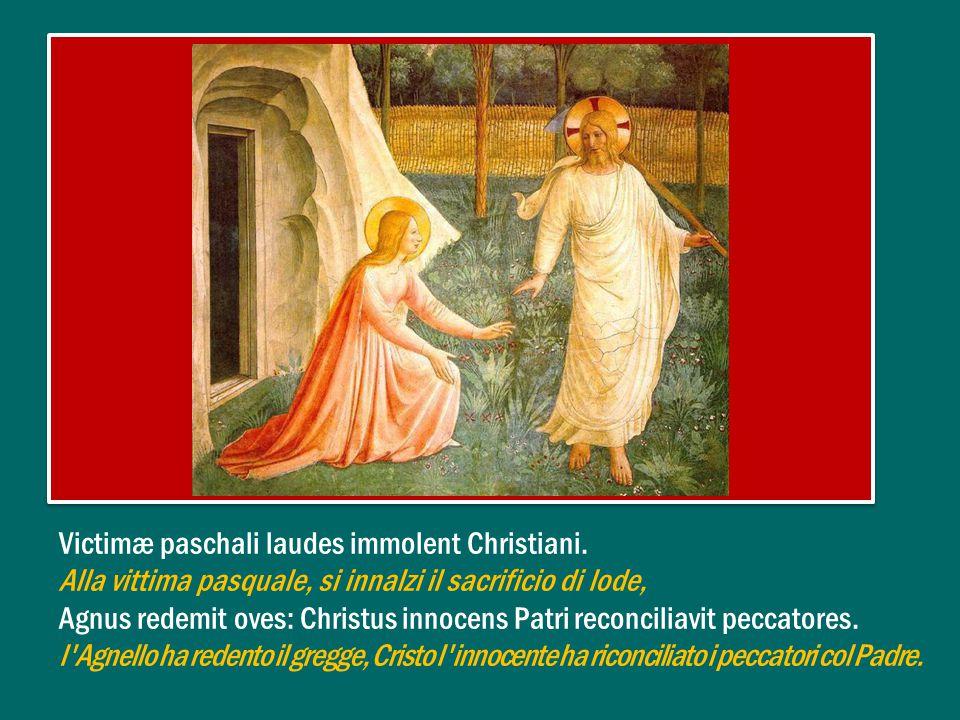 Anche noi, come le donne discepole di Gesù, che andarono al sepolcro e lo trovarono vuoto, possiamo domandarci che senso abbia questo avvenimento (cfr Lc 24,4).