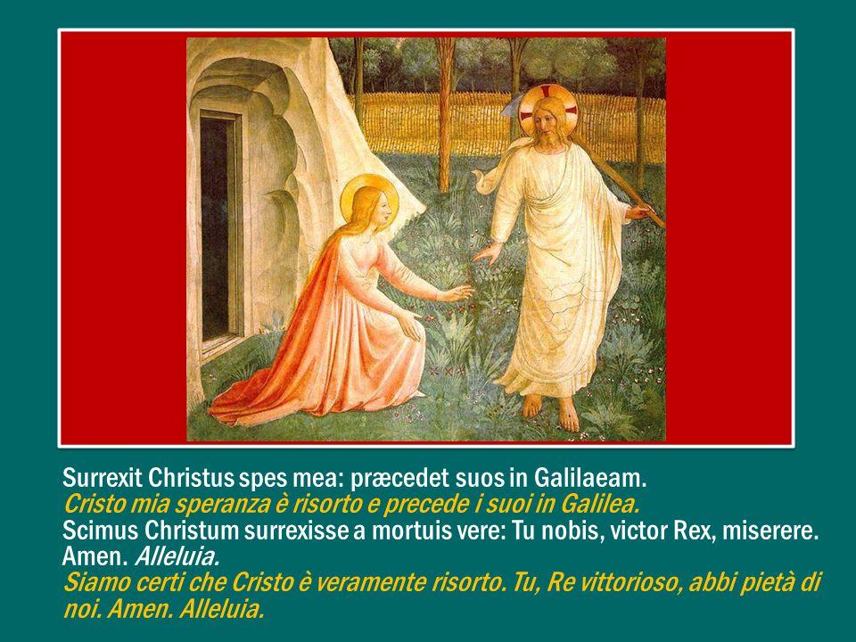 Surrexit Christus spes mea: præcedet suos in Galilaeam.