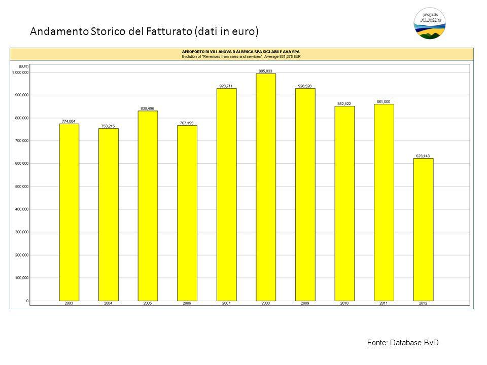 Andamento Storico del Fatturato (dati in euro) Fonte: Database BvD