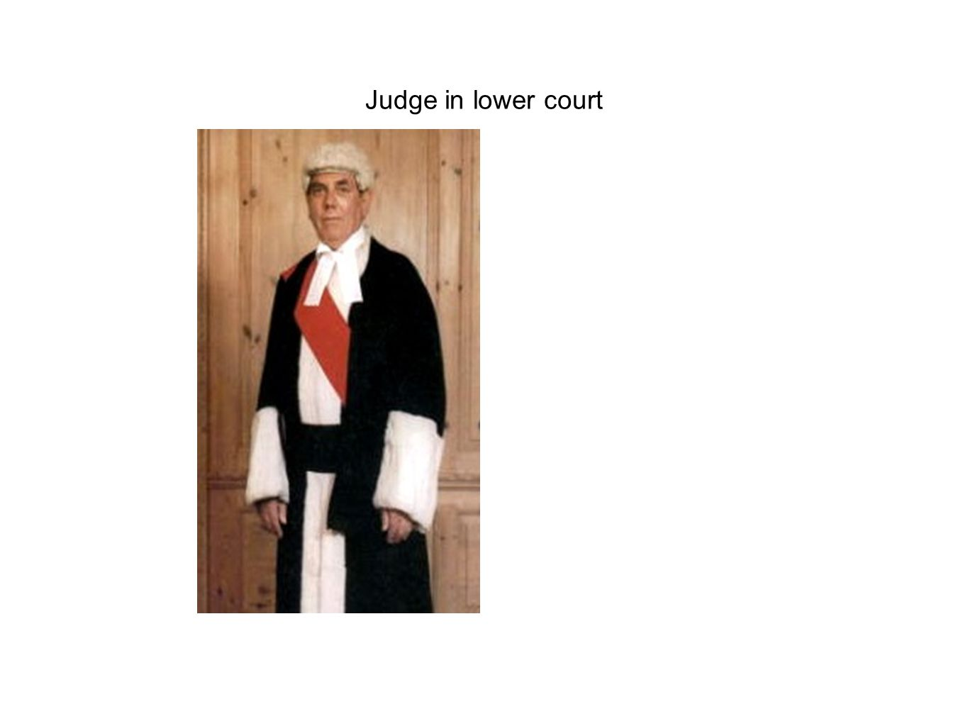 Judge in lower court