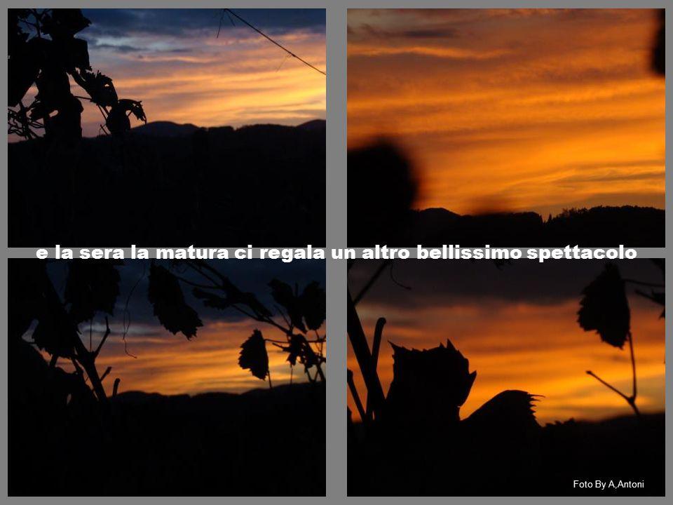 e la sera la matura ci regala un altro bellissimo spettacolo Foto By A,Antoni