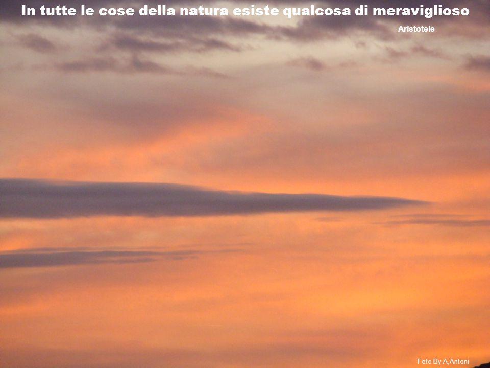 In tutte le cose della natura esiste qualcosa di meraviglioso Aristotele Foto By A,Antoni