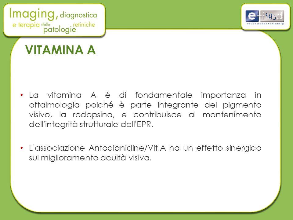 VITAMINA A La vitamina A è di fondamentale importanza in oftalmologia poiché è parte integrante del pigmento visivo, la rodopsina, e contribuisce al mantenimento dell'integrità strutturale dell'EPR.