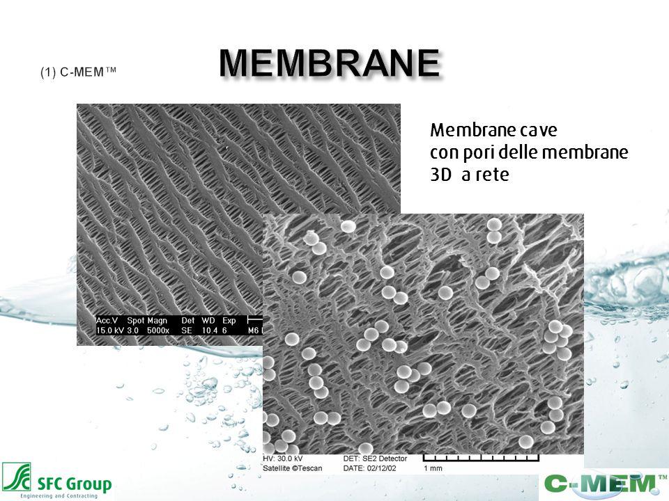 Membrane cave con pori delle membrane 3D a rete