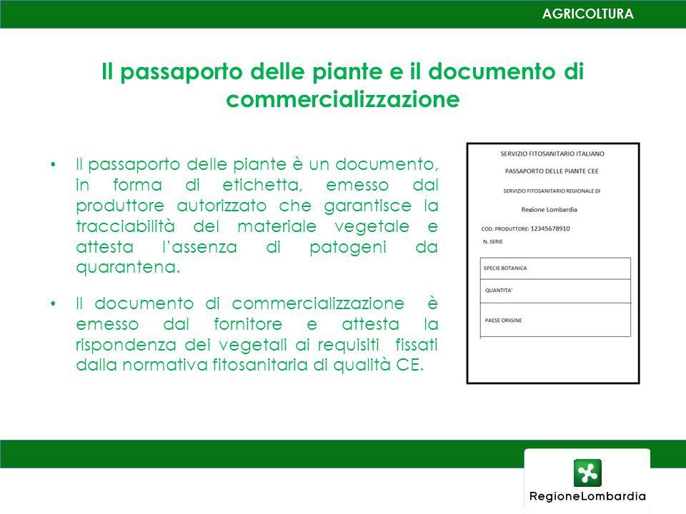 Il passaporto delle piante è un documento, in forma di etichetta, emesso dal produttore autorizzato che garantisce la tracciabilità del materiale vegetale e attesta l'assenza di patogeni da quarantena.