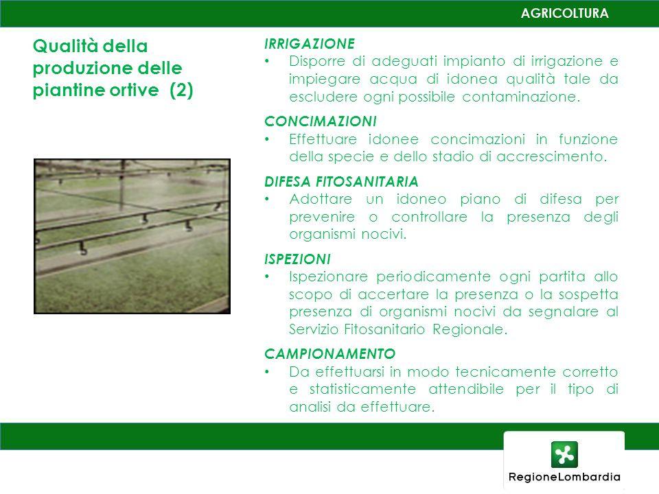 Qualità della produzione delle piantine ortive (2) IRRIGAZIONE Disporre di adeguati impianto di irrigazione e impiegare acqua di idonea qualità tale da escludere ogni possibile contaminazione.