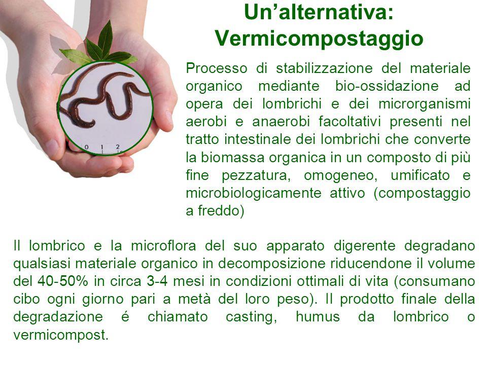Un'alternativa: Vermicompostaggio Il lombrico e la microflora del suo apparato digerente degradano qualsiasi materiale organico in decomposizione ridu
