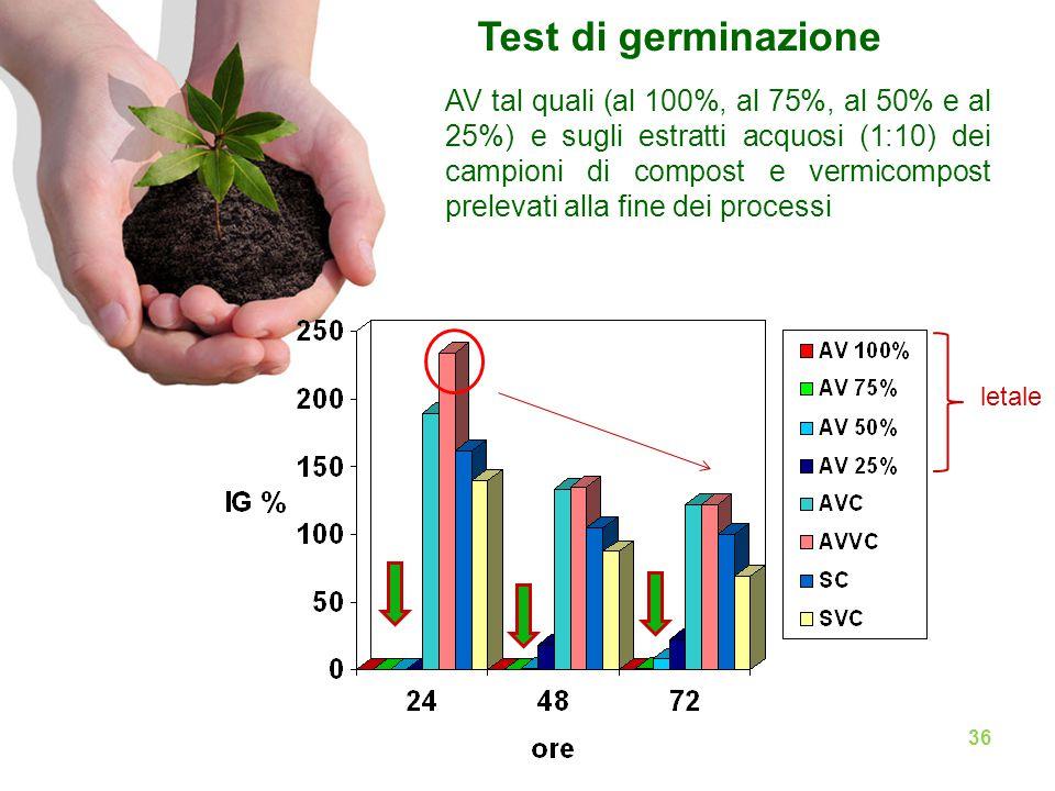 AV tal quali (al 100%, al 75%, al 50% e al 25%) e sugli estratti acquosi (1:10) dei campioni di compost e vermicompost prelevati alla fine dei processi Test di germinazione 36 letale