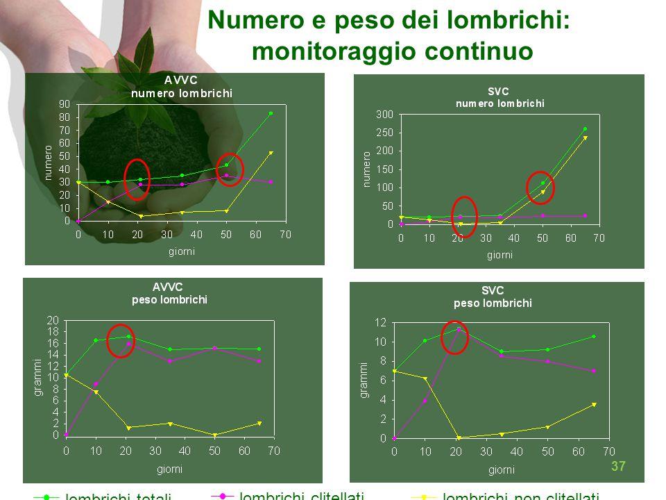 lombrichi totali lombrichi clitellati lombrichi non clitellati Numero e peso dei lombrichi: monitoraggio continuo 37