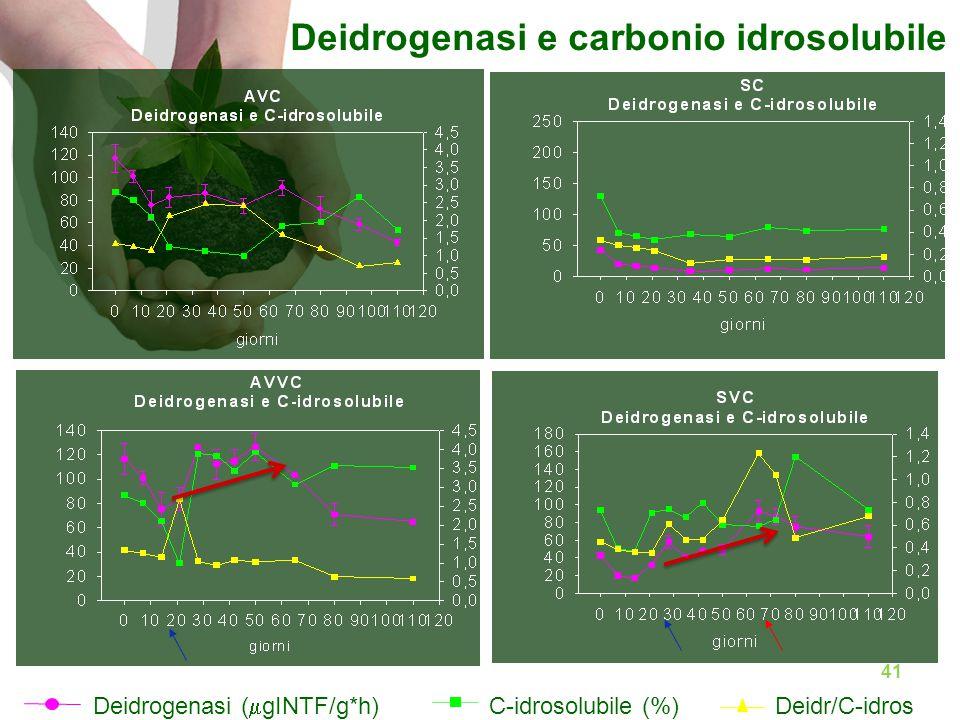 Deidrogenasi (  gINTF/g*h) C-idrosolubile (%)Deidr/C-idros Deidrogenasi e carbonio idrosolubile 41