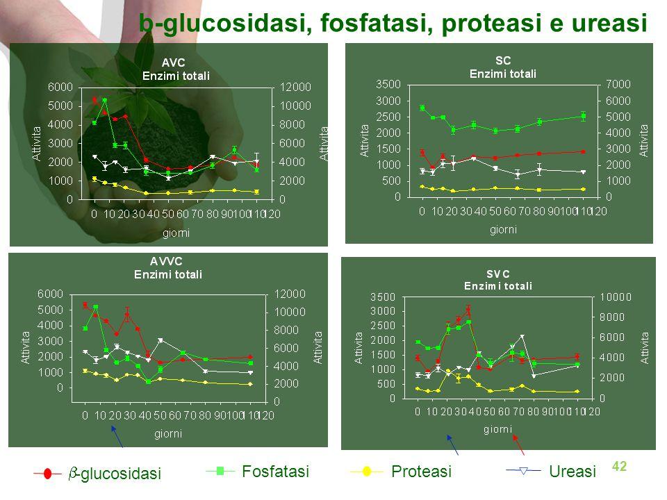b-glucosidasi, fosfatasi, proteasi e ureasi  -glucosidasi ProteasiUreasiFosfatasi 42