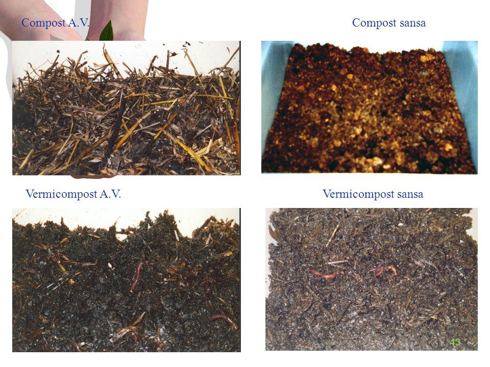 Vermicompost A.V. Compost A.V. Vermicompost sansa Compost sansa 43