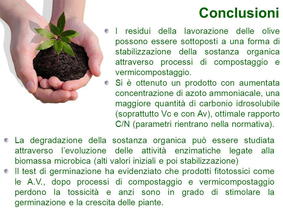 Conclusioni La degradazione della sostanza organica può essere studiata attraverso l'evoluzione delle attività enzimatiche legate alla biomassa microb