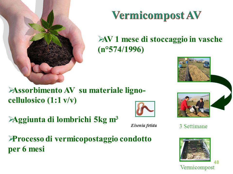  Assorbimento AV su materiale ligno- cellulosico (1:1 v/v)  Aggiunta di lombrichi 5kg m 3  Processo di vermicopostaggio condotto per 6 mesi 3 Setti