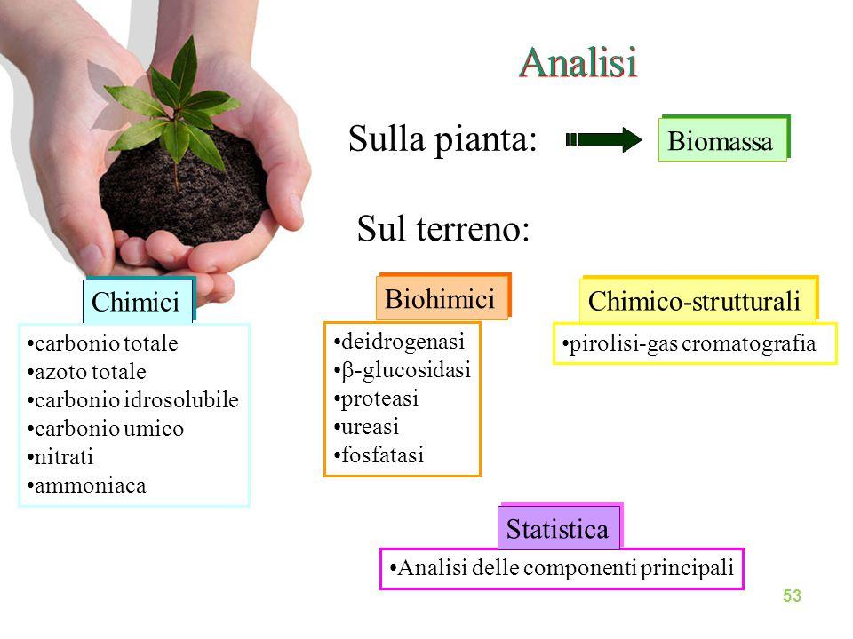 Analisi Sulla pianta: Biomassa Chimici carbonio totale azoto totale carbonio idrosolubile carbonio umico nitrati ammoniaca deidrogenasi  -glucosidasi