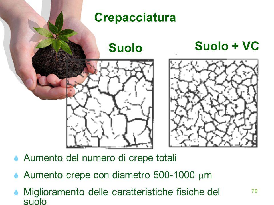 Crepacciatura Suolo Suolo + VC  Aumento del numero di crepe totali  Aumento crepe con diametro 500-1000  m  Miglioramento delle caratteristiche fisiche del suolo 70