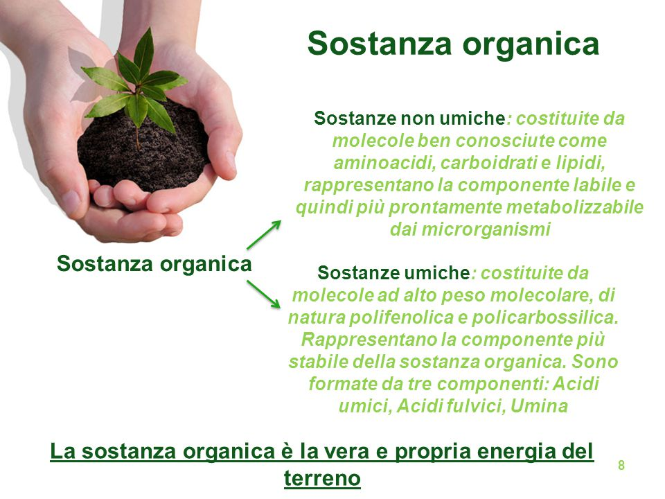 La sostanza organica è la vera e propria energia del terreno Sostanza organica Sostanze non umiche: costituite da molecole ben conosciute come aminoac