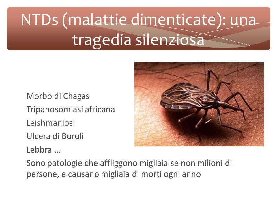 NTDs (malattie dimenticate): una tragedia silenziosa Morbo di Chagas Tripanosomiasi africana Leishmaniosi Ulcera di Buruli Lebbra....