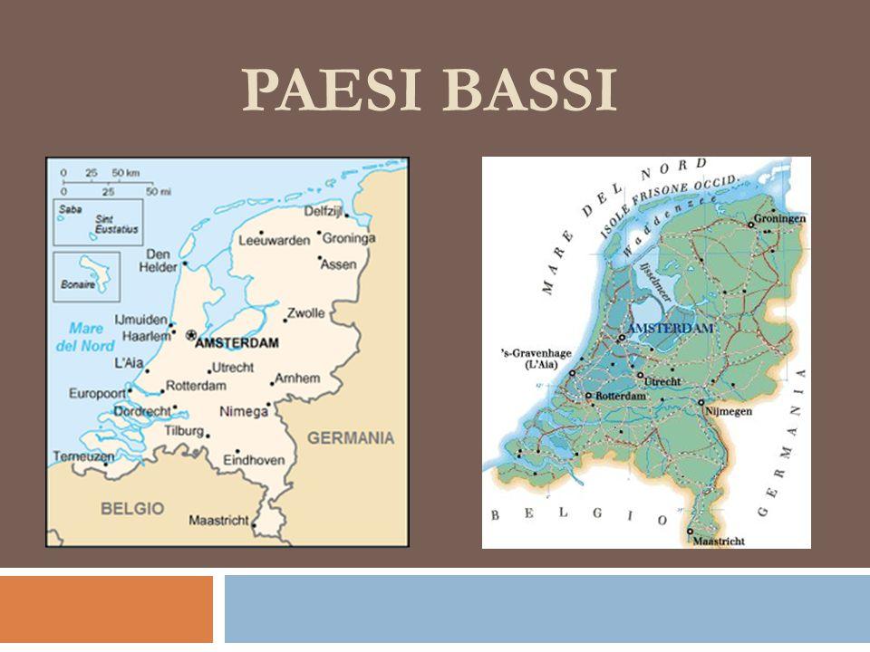 Paesi Bassi NOME: paese molto piatto, di cui un quarto si trova sul livello del mare o al di sotto (una delle depressioni europee) Gran parte del territorio è stata strappata al mare grazie all'azione dell'uomo: POLDER ( DAL MEDIOEVO A OGGI CIRCA 7000 KMQ) (UMBRIA= CA 8500 KMQ) ES.