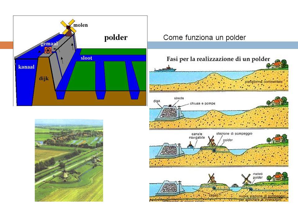 Come funziona un polder