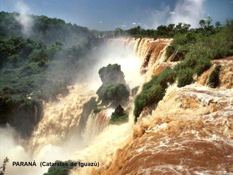13° - RIO DELLA PLATA-PARANA Lunghezza: 3998 km - Portata media: 16800 (metri cubi/sec) - Sorgente: Confluenza Paranaiba e Rio Grande 1148 mt.