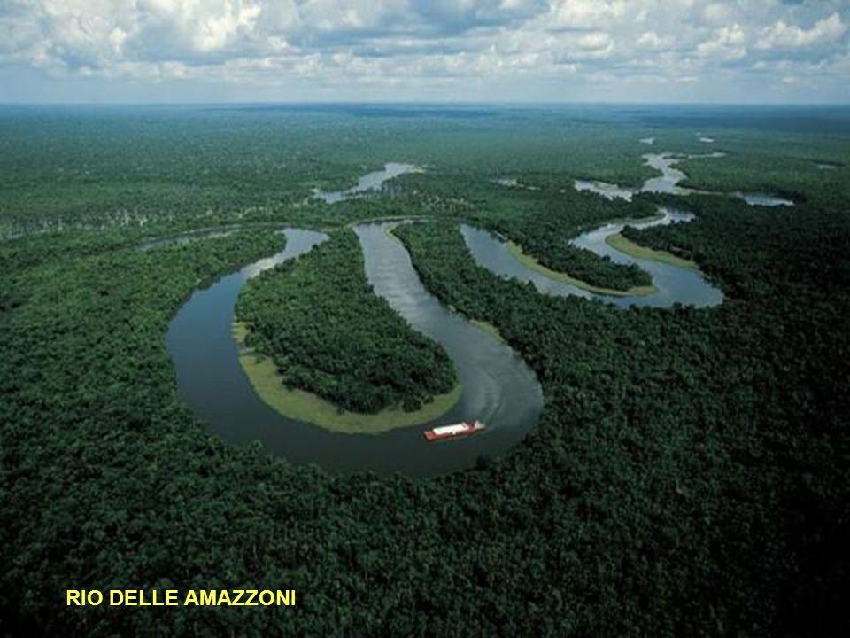 1° - RIO DELLE AMAZZONI Lunghezza: 6937 km - Portata media: 175.000 (metri cubi/sec) - Sorgente: Nevado Mismi 5179 mt.