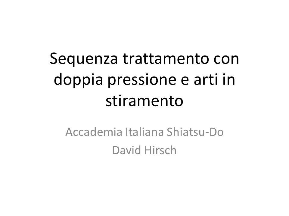 Sequenza trattamento con doppia pressione e arti in stiramento Accademia Italiana Shiatsu-Do David Hirsch