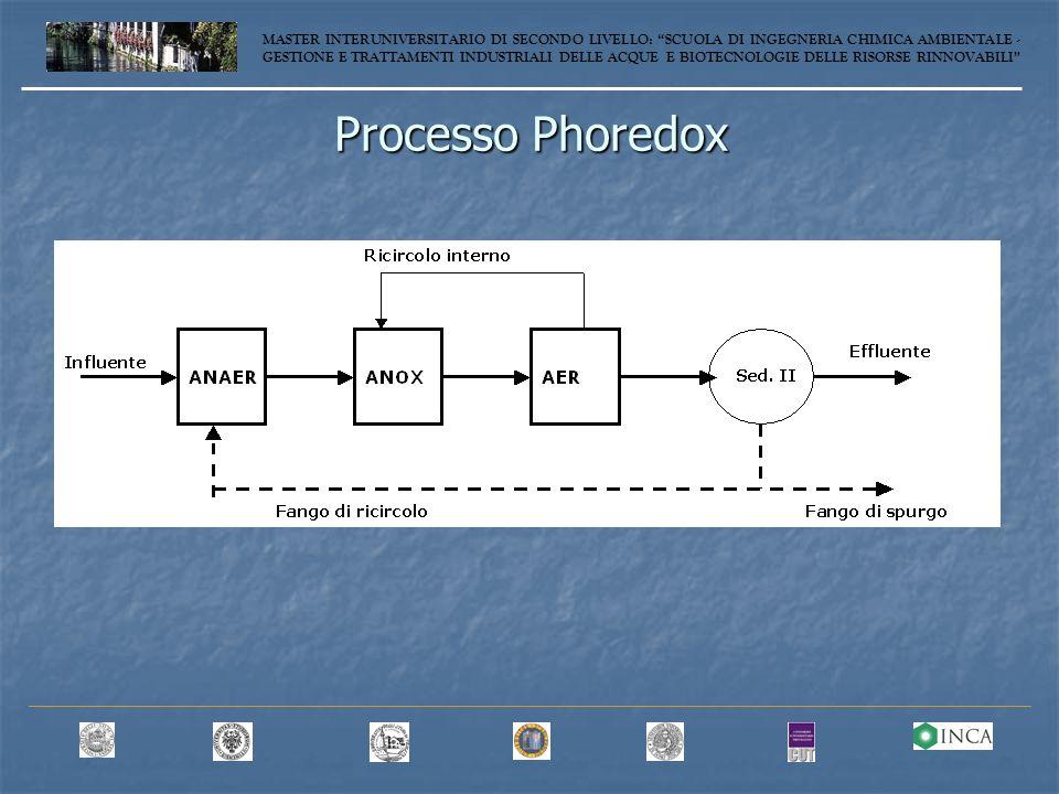 Processo Phoredox MASTER INTERUNIVERSITARIO DI SECONDO LIVELLO: SCUOLA DI INGEGNERIA CHIMICA AMBIENTALE - GESTIONE E TRATTAMENTI INDUSTRIALI DELLE ACQUE E BIOTECNOLOGIE DELLE RISORSE RINNOVABILI
