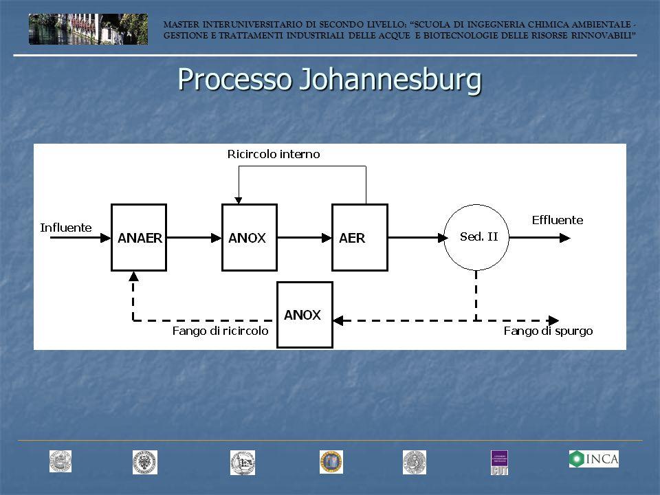 Processo Johannesburg MASTER INTERUNIVERSITARIO DI SECONDO LIVELLO: SCUOLA DI INGEGNERIA CHIMICA AMBIENTALE - GESTIONE E TRATTAMENTI INDUSTRIALI DELLE ACQUE E BIOTECNOLOGIE DELLE RISORSE RINNOVABILI
